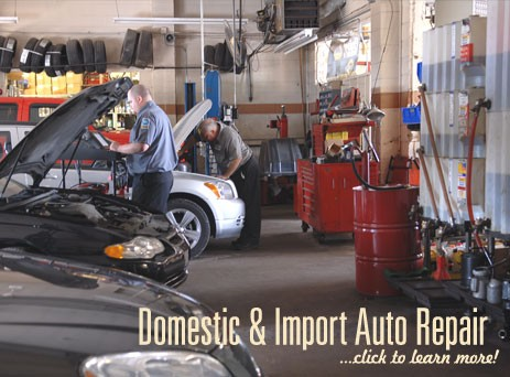 Domestic & Import